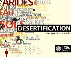 Desertificación: una síntesis visual