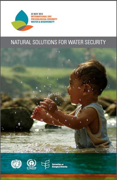Soluciones naturales para la seguridad hídrica