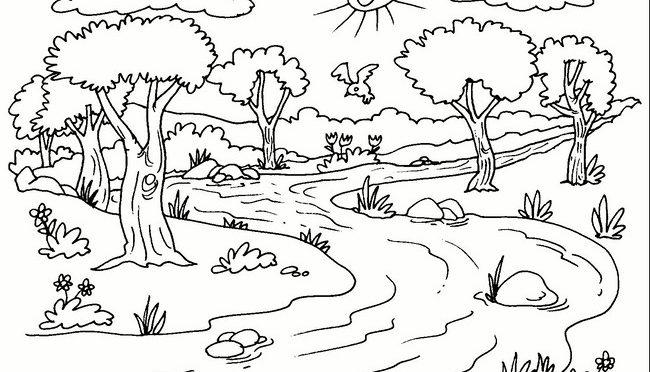 Río Limpio Aguaorgmx