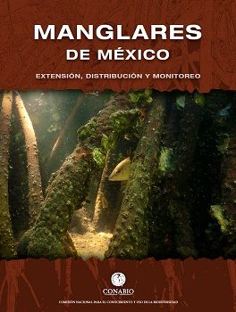 Manglares de México: Extensión, distribución y monitoreo