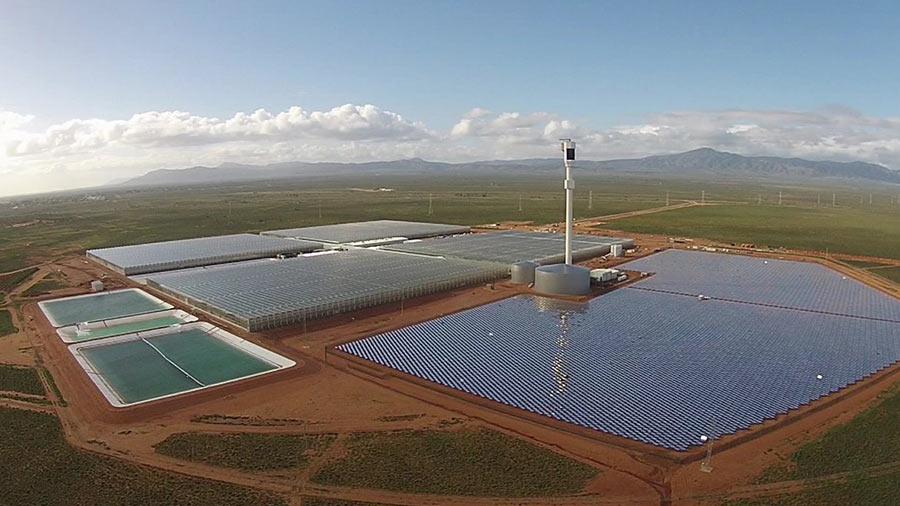 Energía solar para desalar agua y cultivar en el desierto, una idea no tan buena