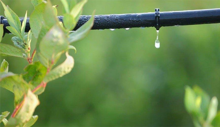 Huella hídrica y consumo responsable