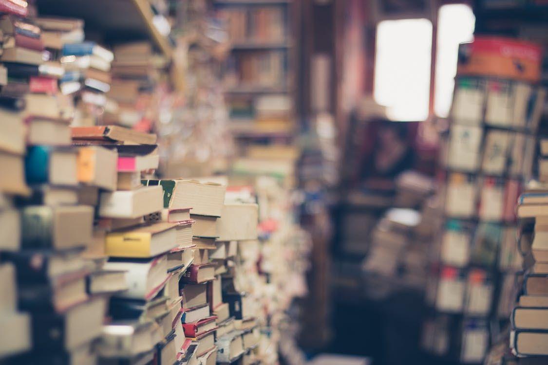 Biblioteca temática
