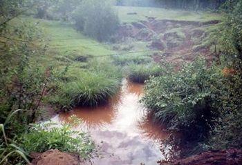 Modos de relación de los eldoradenses con los bosques protectores de cuencas hidrográficas, en el municipio de Eldorado, Misiones