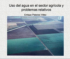 Uso del agua en el sector agrícola y problemas relativos