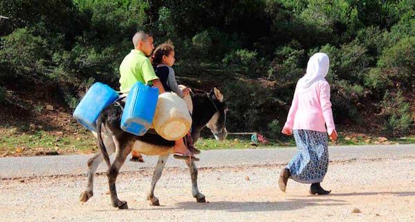 Desertificación y sequía, la otra cara del agua