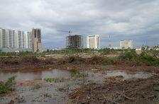 Tribunal ordena se restituya el manglar en Tajamar