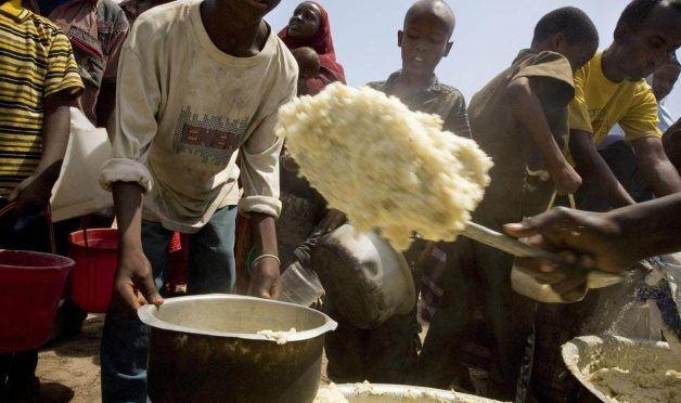 Se agudiza crisis alimentaria: FAO. Alertan contra conflictos y sequías