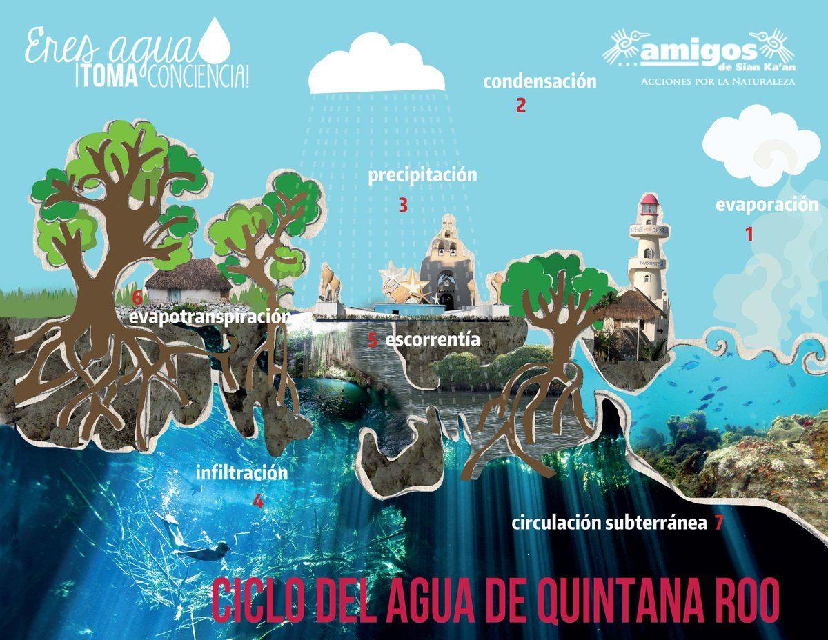Ciclo del agua de Quintana Roo (infografía)