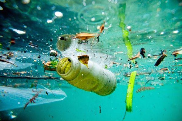 Contaminación del agua: causas, consecuencias y soluciones – Agua.org.mx