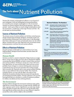The Facts about Nutrient Pollution