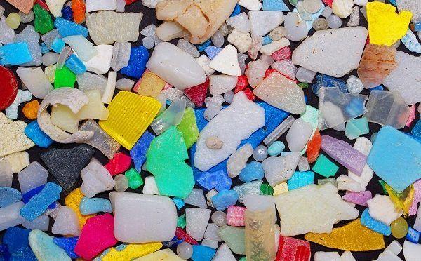 Cinvestav Mérida estudia contaminación de microplásticos en El Caribe (20 Minutos)