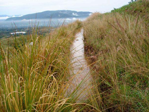 Agua lenta para ecosistemas sanos