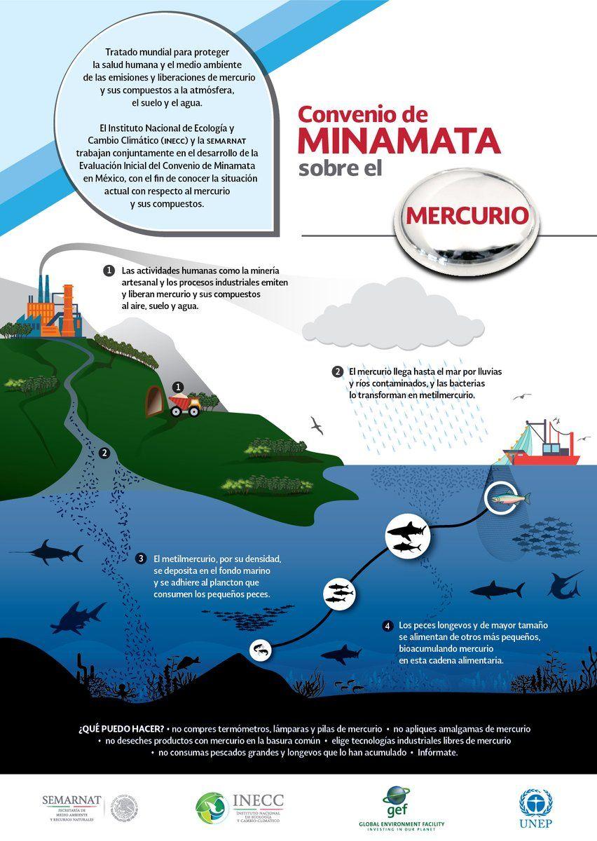 Convenio de Minamata sobre el mercurio (infografía)