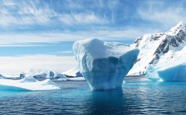 Antártida: Los mejillones podrían invadir la Antártida y dañar su diversidad (EFE)