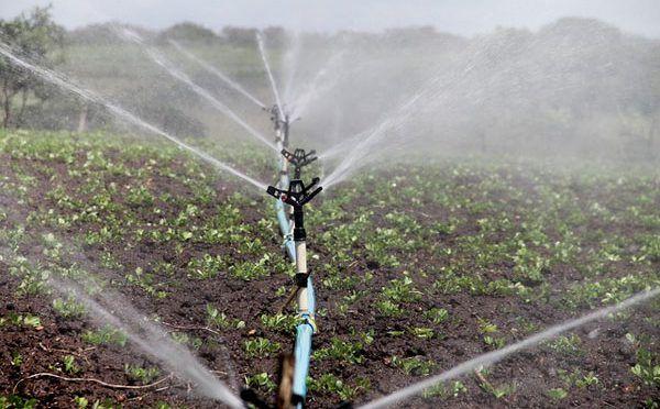 México: La productividad del agua en el sector agrícola (Conacyt Prensa)