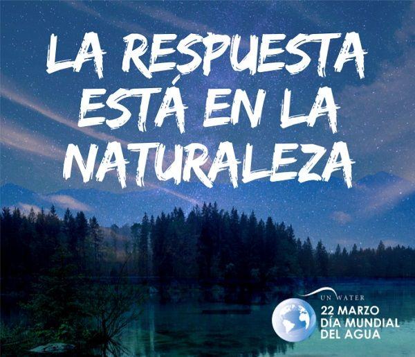 La respuesta está en la Naturaleza