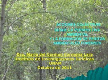 Acciones colectivas desde la perspectiva ambiental y la formación de peritos ambientales forenses