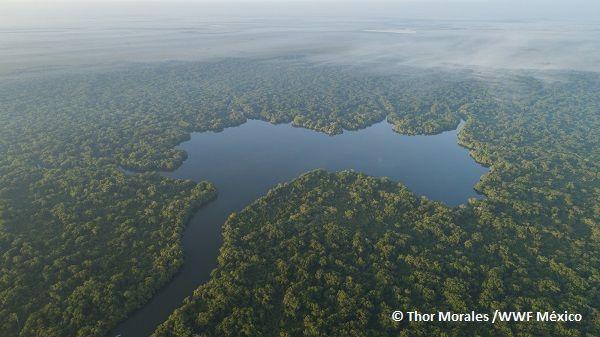 Decreta el Presidente reservas de agua para el ambiente en cerca de 300 cuencas de México