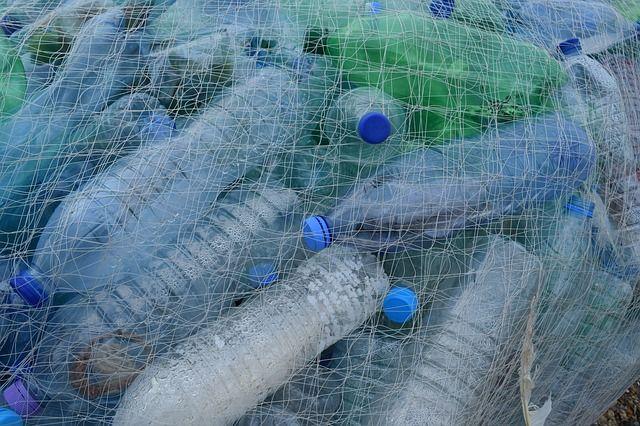 Por un mundo sostenible, sin plásticos en nuestros mares.