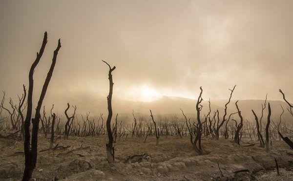 La ONU urge a tomar medidas drásticas para limitar la subida de la temperatura global a 1,5 ºC (RTVE)