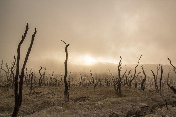 17 de junio: Día Mundial de Lucha contra la Desertificación y la Sequía