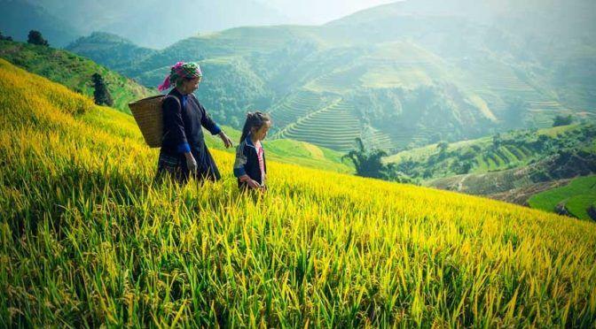 China aprueba un nuevo plan para hacer frente a la contaminación de sus aguas en zonas rurales (iAgua)