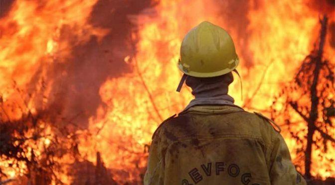 España: Cada año nos gastamos 1.000 millones en apagar fuegos forestales (Ecoticias)