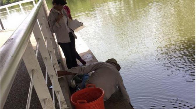 Tampico: Contaminación se agrava en laguna del Carpintero (El Sol de Tampico)