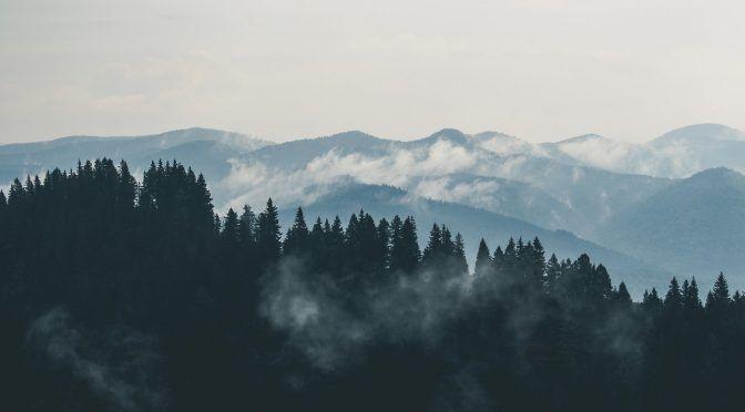 Toluca: Oda a los guardianes del bosque (Gatopardo)