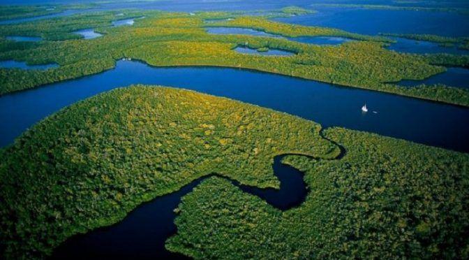 Mundo: Los ríos a nivel del planeta tienen más volumen de lo que se pensaba (Ecoticias)