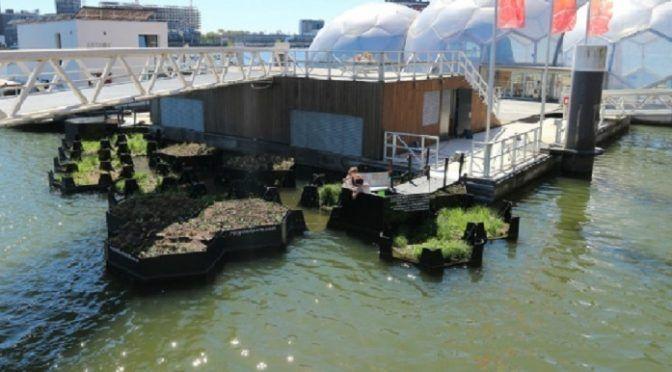 Rotterdam presume de parque flotante reciclado (Ecoticias)