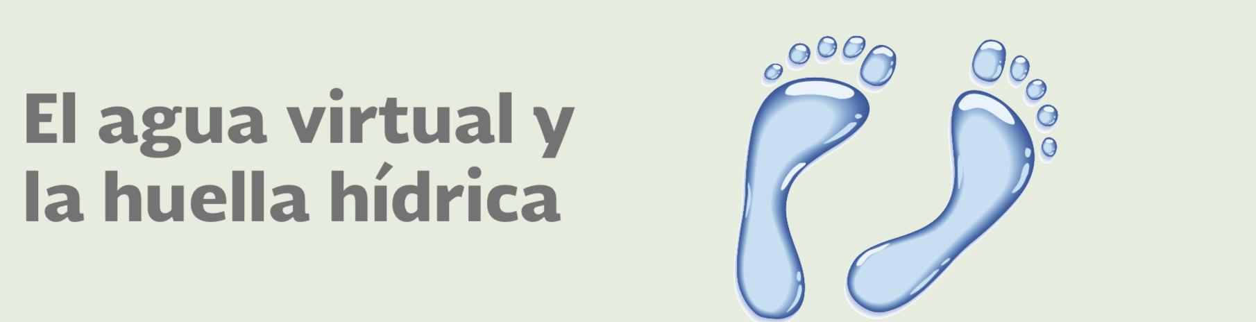 El agua virtual y la huella hídrica
