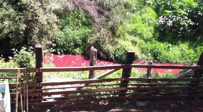 Puebla: Atoyac se tiñe de rojo en Texmelucan: Dale la Cara (Milenio)