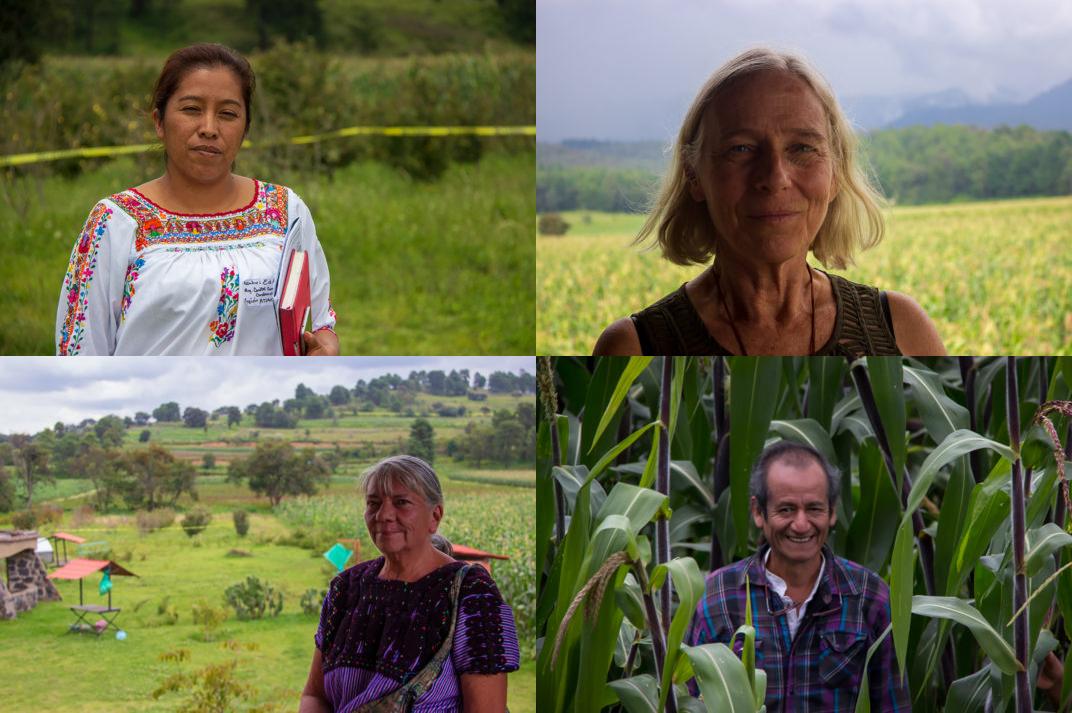 """Amecameca: Comunidades buscan """"ciudadanizar"""" la gestión del agua (LadoB)"""