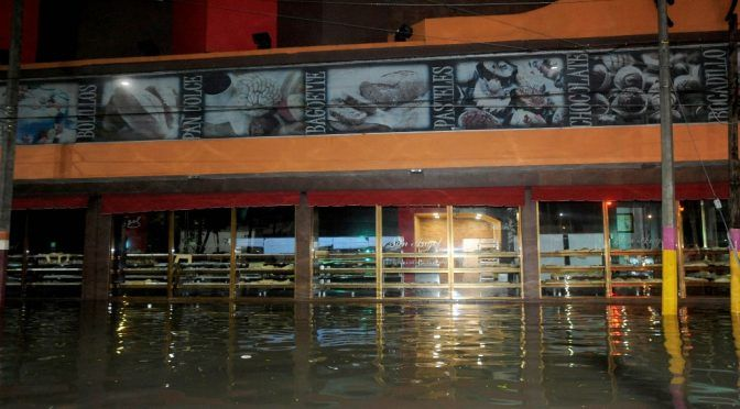Fuertes lluvias afectan el sur de la CDMX (La Jornada)