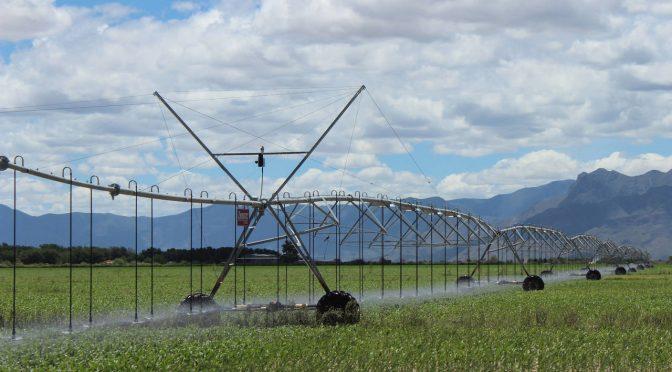 Torreón: Señalan problema en manejo del agua (El Siglo de Torreón)