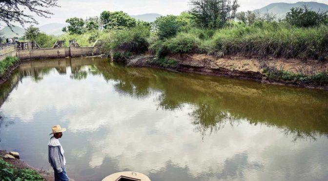 """""""Sembradores de agua"""": la lucha de los campesinos oaxaqueños por los recursos acuíferos (Newsweek)"""