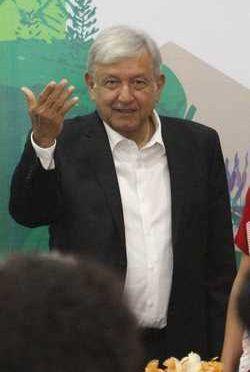 Académicos piden a AMLO no construir el Tren Maya ( La Jornada)