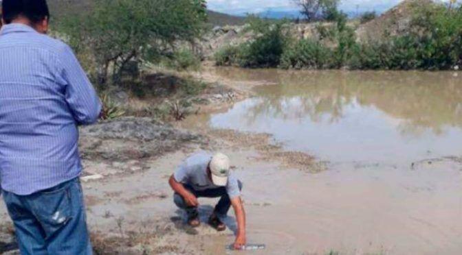 La Profepa confirma derrame causado por empresa de filial canadiense en río El Coyote, Oaxaca (Proceso)
