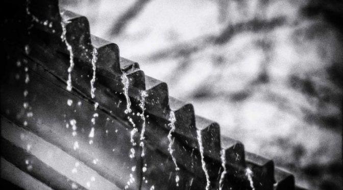 Cosechar agua de lluvia: Solución para la escasez (Newsweek)