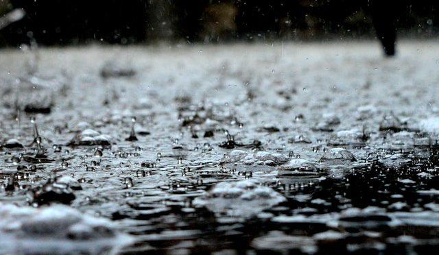 CdMx: Llaman a plantear manejo de aguas (Reforma)