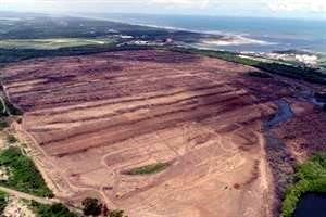 Acusa ONG ilegalidad en nueva refinería (Reforma)