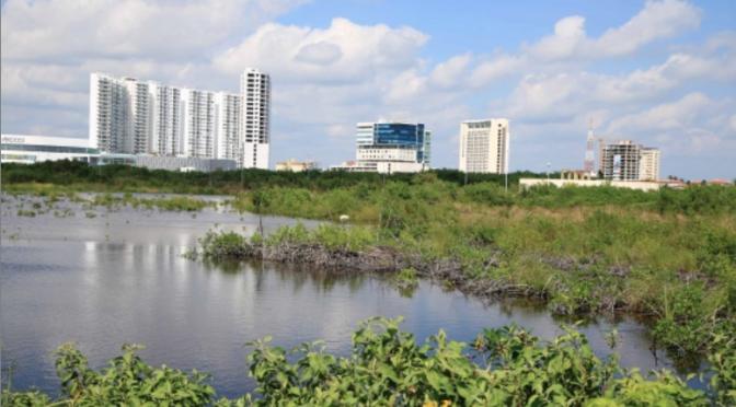 Quintana Roo: México presume en Dubai la preservación de sus humedales (La Jornada Maya)