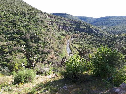 Red de apoyo del CNI en Zacatecas se solidariza con ejidatarios que se oponen a presa Milpillas ( La Jornada Zacatecas)