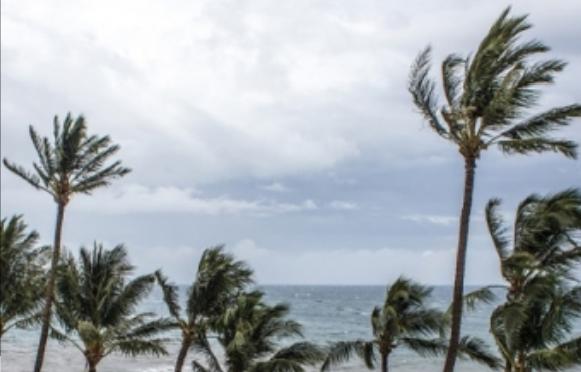 Activan protocolos de emergencia por tormenta Xavier en Michoacán (La Jornada)