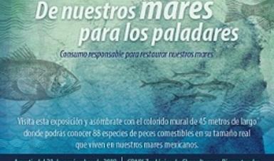 CdMx: Consumo responsable para restaurar nuestros mares (gob.mx)