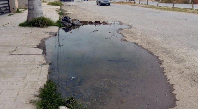 Colonia de Torreón cumple un mes bajo aguas negras (Multimedios)