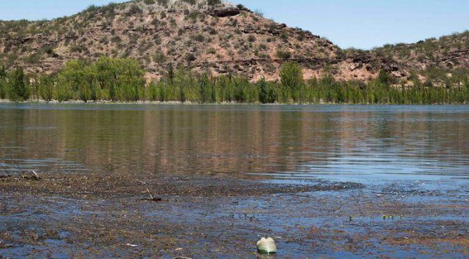 Argentina: Estudiantes investigan la contaminación del río (LMNeuquen.com)