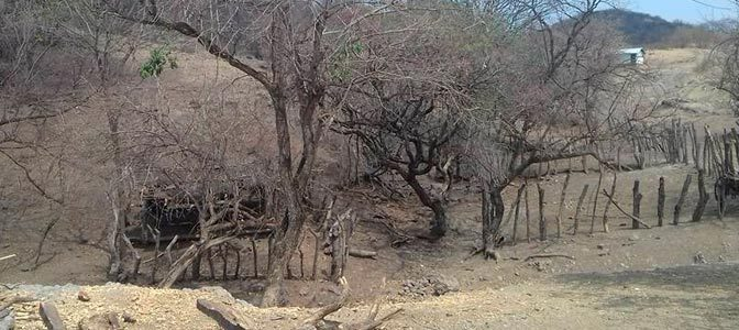 Costos del cambio climático en la región Tierra Caliente (Conacyt)